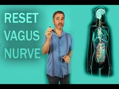 Resetting your Vagus nerve Home Health, Gut Health, Vagus Nerve Damage, Vagus Nerve Stimulator, Gut Brain, Diabetic Tips, Natural Health Remedies, Wellness Fitness, Alternative Health