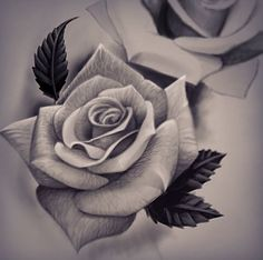 Can see the silkyness of the rose petals I this drawing.want that realistic feature to be captured in rose tattoo Rose Drawing Tattoo, Tattoo Sketches, Tattoo Drawings, Neue Tattoos, Body Art Tattoos, Tatoos, Flower Tattoo Designs, Flower Tattoos, Tattoo Roses