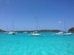 Tobago cays- caribe