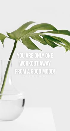 Remember: you're only one workout away from a good mood! Head over to www.V3Apparel.com/MadeToMotivate to download this wallpaper and many more for motivation on the go! / Fitness Motivation / Workout Quotes / Gym Inspiration / Motivational Quotes / Motivation