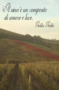 Citazione sul vino di Galileo Galilei