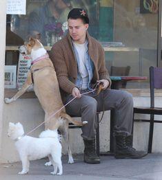 Channing Tatum's rescue pup, Lulu, and his wife's pretty pooch, Meeka, wait outside in Santa Barbara