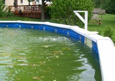 how to take care of water in your above ground pool and stop it from turning