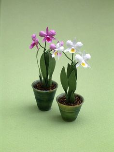 Cattleya Orchid Paper Flower Kit  for 1/12th by TheMiniatureGarden, £3.50