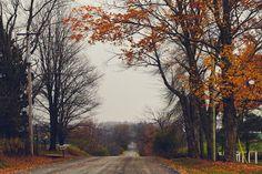 enchanting-autumn:   autumn drives by Shandi-lee Cox    Via Flickr: