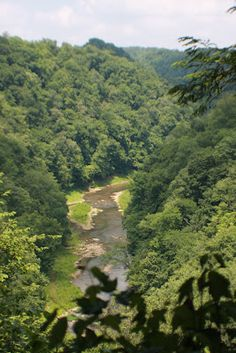 This Is My Sparta ! Sparta Tennessee, Visit Tennessee, In Ancient Times, Roots, Scotland, Waterfall, Germany, Journey, River