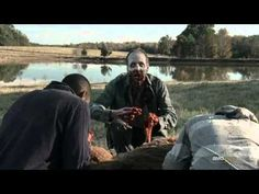 The Walking Dead - Office Space Special (If Zombies gross you out, this is not the video for you.)