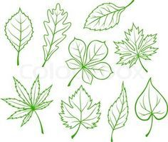 leaves drawing tumblr - Google Search