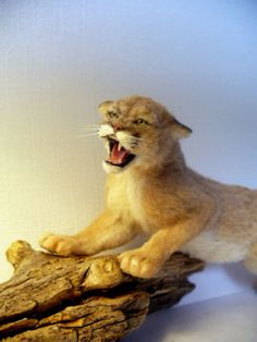Dollhouse-Miniature-Snarling-Cougar-Handsculpted by linda060060