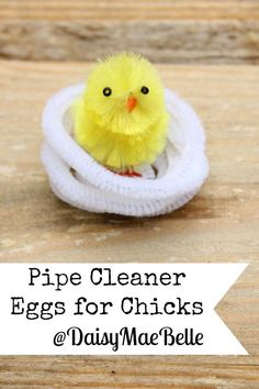 DIY Pipe Cleaner Eggs