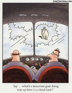 Flying Mountain Goat