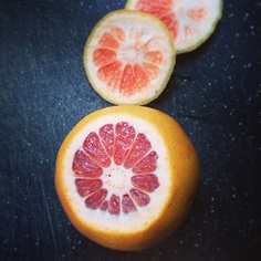 We Made It Home Blog: Grapefruit by Haley Harmon