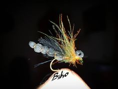 On our way back from Lappland, this fly made our day with big greyling and trout with liturally every cast. No other fly die succied. Cant\'t wait to get back to sweden . . .#troutpornnation #grayling#harr #daviemcphail #dryordie #öring #brountrout #flyfishingjunkie #flyfishingaddict #flyfishing #fliegenfischen #trockenfliege #flytying #flytyingnation #flytyingnerd #tiemcohooks #stonfotransformer #fluefiske #fluebinding #lappland #fjellfiske