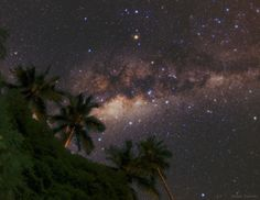 The central bulge of the Milky Way appears above coconut palms at the shores of Ilha Grande, Brazil.