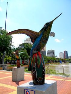 #guayaquil