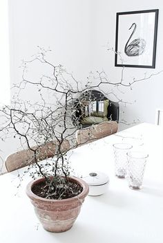 ♥ Simplicity | #white #interiors #home