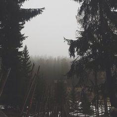 Dark Paradise, Dark Places, Darkness, Wildlife, Culture, Mountains, Architecture, World, Travel