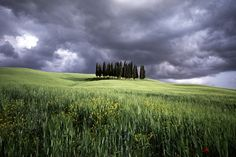 Tuscany. Charlie Waite