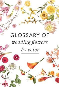 Brides.com: A Glossary of Wedding Flowers by Color%0AHave you ever wondered if hydrangeas come in blue? (They do!) Are you curious as to whether or not you can find orchids year round? (You can!) Compiling your dream wedding bouquet is part inspiration, part knowledge, and we've got them both covered in this comprehensive guide to wedding flowers by color.