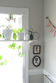 In love with the plant shelf idea