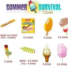 Slimming World Summer Survival (ice lollies)