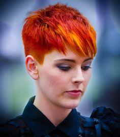 funky hair color ideas for short hair   New Hairstyle Idea