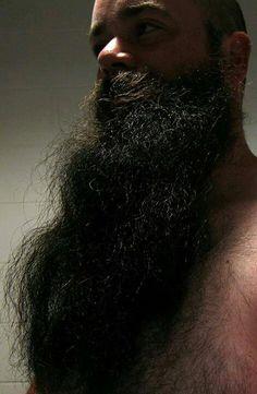 very long dark beard natural bearded man men beards epic I Love Beards, Great Beards, Long Beards, Awesome Beards, Walrus Mustache, Beard No Mustache, Sexy Beard, Epic Beard, Moustaches