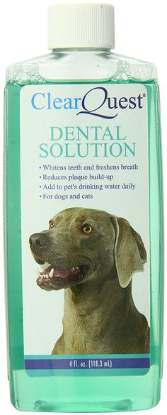 ClearQuest cat Dental Solution Clip Strip, 6-Pack >>> Find out more details by clicking the image (This is an amazon affiliate link. I may earn commission from it)