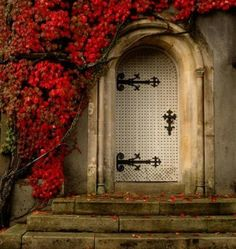 Great hardware on the door......and bouganvilla?