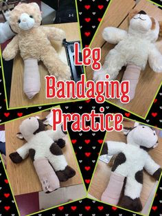 Rebekah White has another great idea.  Bandaging practice with stuffed animals.  www.OneLessThing.net for more follow her on Twitter @ms_rwhite
