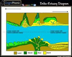 Free Quiz Game : Delta-Estuary Diagram delta, estuary, deltas, estuaries, diagram, estuary diagram, land, marsh, mud, sand, linearcoast, coast, coastal,marine sediment, marine sediment supply, marine, tidal, tidal-domintaed, tidal flat, tidal flats, strandplain, coastal lagoon, barrier, embayed coast, elongate,lobate , Transgressive, regressive, profgrading, wave power, wave-dominated, tide-dominated estuary, wave-dominated estuary, fluvial, mix, sediments, sedimental,