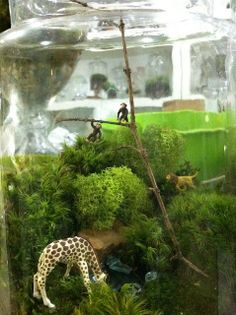 This could be watching better with some more attention to detail Twig Terrariums, Terrarium Scene, Terrarium Centerpiece, Mini Terrarium, Terrarium Plants, Succulent Terrarium, Terrarium Ideas, Little Gardens, Small Gardens