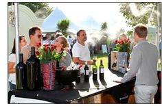 Check out the Stellenbosch Wine Festival happening every January in Cape Town, South Africa. Wine Facts, South African Wine, Carnivals, Wine Festival, Event Calendar, Cape Town, The Ordinary, Wines, Festivals