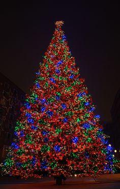 31 Best Led Christmas Lights Images In 2018 Led Christmas Lights