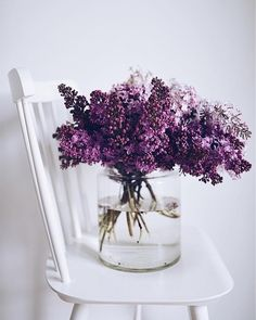 Captivating Choosing Your Wedding Flowers Ideas. Remarkable Choosing Your Wedding Flowers Ideas. Flower Aesthetic, Beautiful Flowers, Lilac Flowers, Send Flowers, Lilac Bouquet, Purple Roses, Faux Flowers, Tropical Flowers, Floral Arrangements