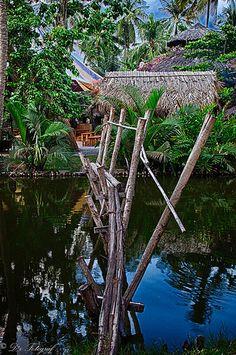 Tropical Village. Vietnam