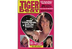 I had Teen Beat posters all over my walls!