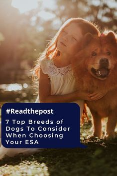 Dogs relieve the owner's stress and offer affection which helps you to tackle the issues of PTSD, anxiety, and depression.  #topbreeds #dogbreeds #readthepost #doglovers