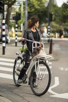 Rad.  Plus I think she brought her cat along for the ride. | Shared from http://hikebike.net