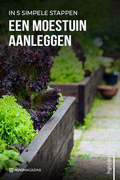 Herb Garden, Vegetable Garden, Garden Plants, Home And Garden, Growing Herbs, Raised Garden Beds, Fresh Vegetables, Gardening Tips, Harvest