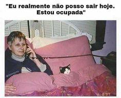 ❤️❤️ #petmeupet #gato #amogato #amoanimais #boanoite