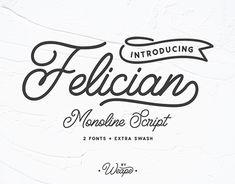 """Check out new work on my @Behance portfolio: """"Felician Monoline Script"""" http://be.net/gallery/61160215/Felician-Monoline-Script"""