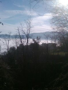 nebbia. Lessinia vicentina .Italy
