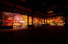 錦彩の光明 - 写真共有サイト:PHOTOHITO