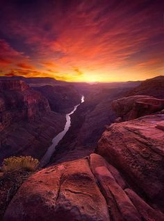 """Red Canyon"" by Marc Adamus .... The Grand Canyon is a steep-sided canyon car..."