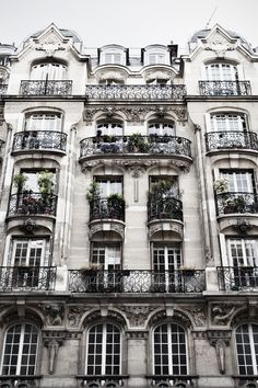 So this is going to be my first home when I am a national vice president with Arbonne and take a year to live in Paris,cycle a bike, learn French and eat finery