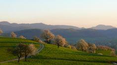 Frühlingsabend im Aargau