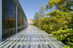 File:Brooklyn Botanic Garden New York May 2015 003.jpg - Wikimedia ...
