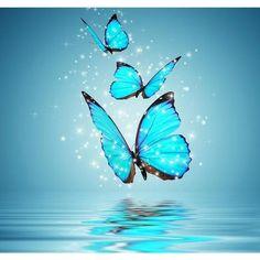 Blue Butterfly 5D DIY Paint By Diamond Kit