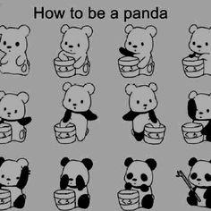 Panda transformation hoorah